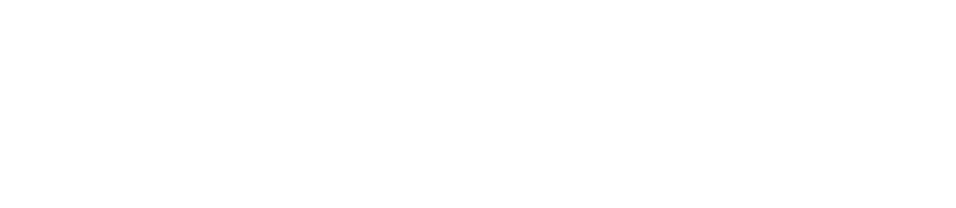 Astor Capital Fund